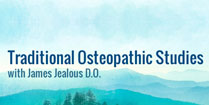 logo-traditional-osteopatic